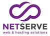 Mini logo netserve white