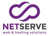 Mini logo netserve white